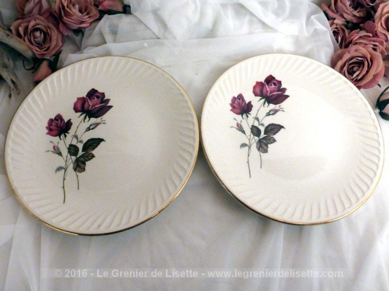 duo d 39 assiettes plates aux roses porcelaine de gien le grenier de lisette. Black Bedroom Furniture Sets. Home Design Ideas