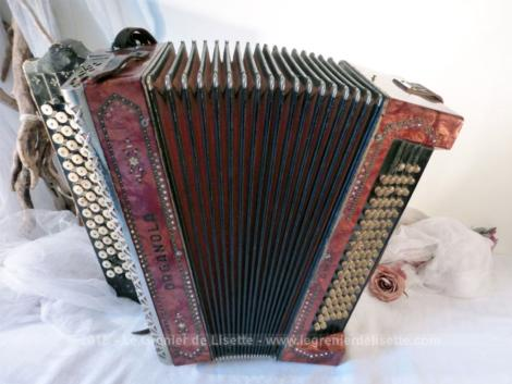 Accordéon vintage de la marque italienne Organola modèle Amati.