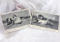 Lot de deux anciennes cartes postales de 1906 sur « Lili et son chien » .