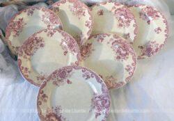 Lot de 7 assiettes en Terre de Fer, LG modèle Pavot, au décor de couleur rose de fleurs et de volutes de 22.5 cm de diamètre, en Terre de Fer.