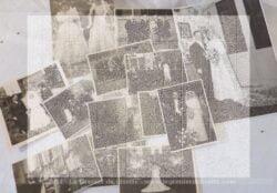 Voici 12 photos anciennes de scènes de mariage datant du début jusqu'à la moitié du siècle dernier. Ces photos seront à vous et donc libres de droit. C'est pour cela qu'elles vous apparaissent floutées afin de ne pas être copiées !!