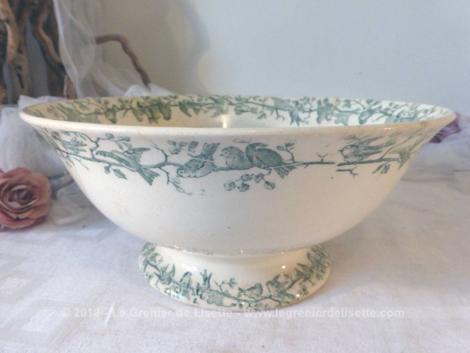 Ancien grand saladier sur socle en Porcelaine Opaque craquelée de Gien, modèle Aviary, aux beaux dessins d'oiseaux.