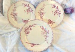 Trois assiettes Sarreguemines Digoin, modèle Favori, avec un décor rose de fleurs et d'oiseau différents pour chaque assiette de 21 cm de diamètre.