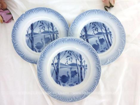 Trois assiettes Digoin aux cygnes bleus, avec un dégradé de couleur bleu sur les reliefs du bord et au centre un dessin de point d'eau.