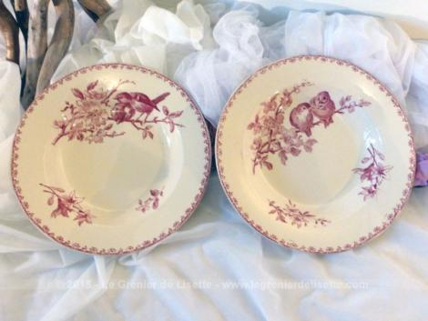 Deux assiettes creuses Sarreguemines Digoin, modèle Favori, avec un décor couleur rose de fleurs et d'oiseau différents pour chaque assiette de 23.5 cm de diamètre.