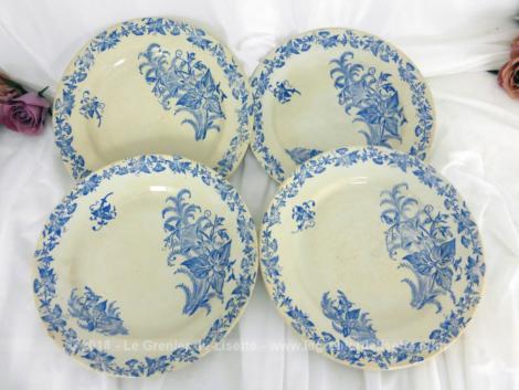 Quatre assiettes aux liserons - FF Pexonne de la fin du XIX° décorées de liserons sous forme de frise sur toute la bordure et en 3 bouquets sur l'intérieur.
