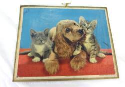 Almanach cartonné des PTT de 1967 avec une photos de chiens sur papier avec au dos les mois et ses 5 feuillets supplémentaires .