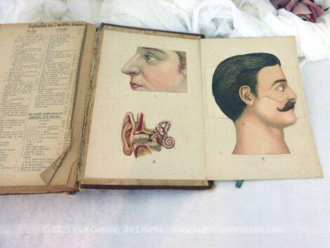Vraiment instructif, ces 2 livres correspondent à la méthode Bilz avec le Tome I et II pour guérir les maladies par une médication naturelle.